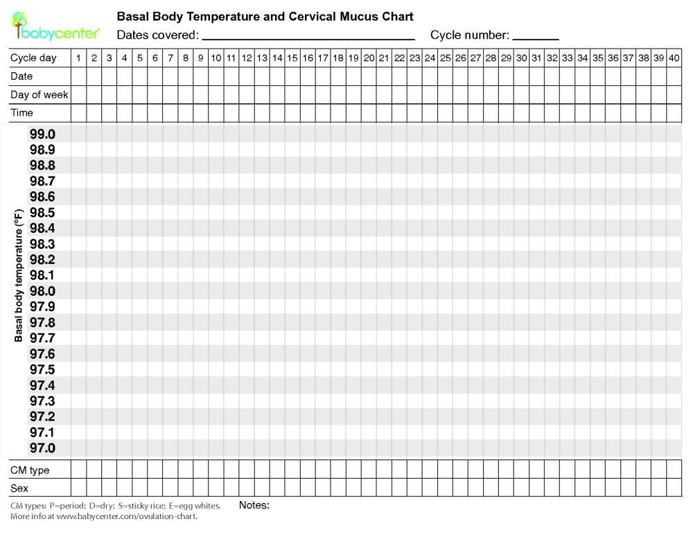 blank-bbt-chart2